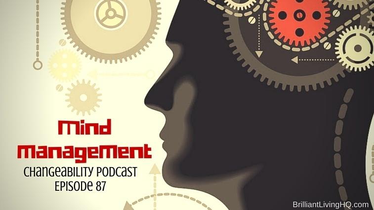 Mind management скачать программу