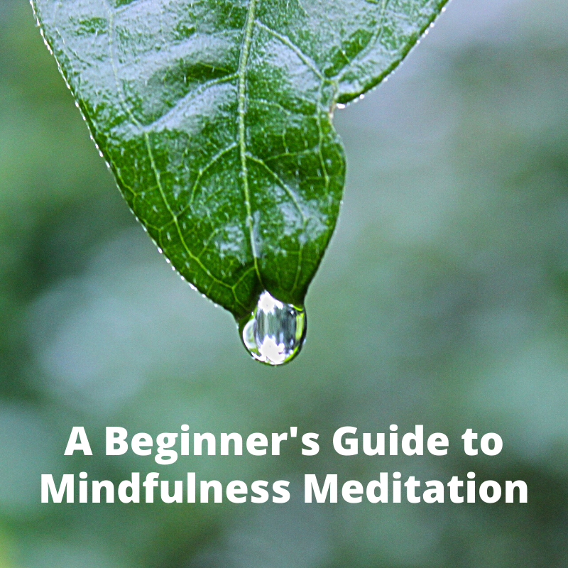 A Beginner's Guide to Mindfulness Meditation Short Course